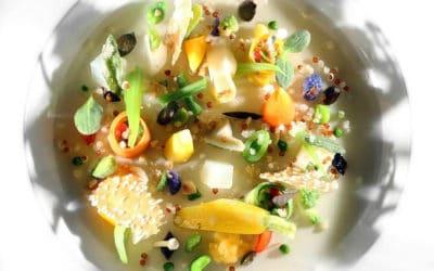 Qu'est-ce que la gastronomie végétale ?